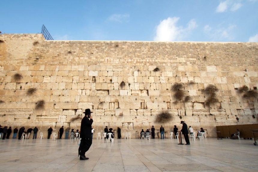 """Змій, що налякав голуба. На Стіні Плачу люди помітили """"знамення кінця світу"""""""